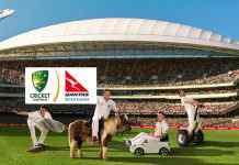 Qantas-CA extend team shirt partnership for Ashes- InsideSport