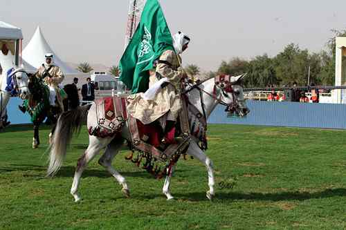 The King Abdulaziz Horse Championship - InsideSport