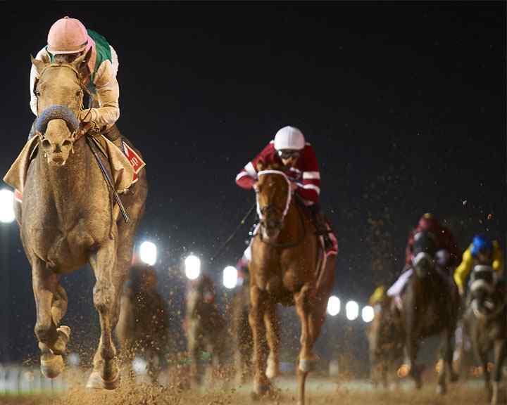 The Dubai World Cup Horse Racing - InsideSport