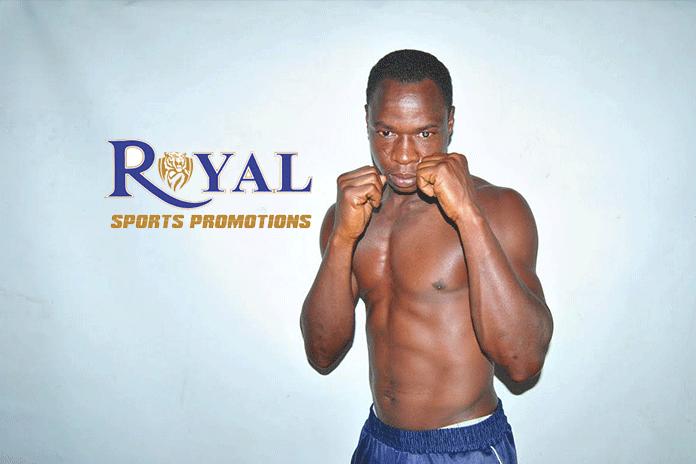 royal sports promotion,pro boxing night,professional boxing,boxing federation of india,International Pro Boxing Night