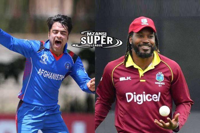 Mzansi Super League,Cricket South Africa's,Rashid Khan Mzansi Super League,Mzansi Super League player draft,Chris Gayle Mzansi Super League