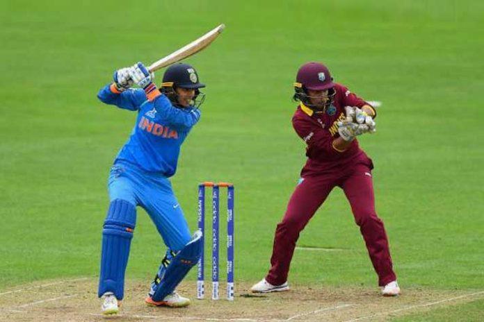 Women's T20 League,CPL Women's League,Caribbean Premier League,ICC Women's World T20 2018,CPL COO