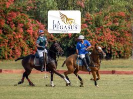 La Pegasus Polo,La Pegasus Sponsorships,Polo Championship India,Polo Championship 2019,Polo Championship India 2019