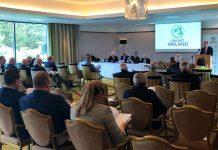 Fingal County Council,David O'Connor,Cricket Ireland president,Cricket Ireland,Aideen Rice