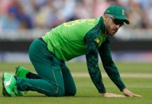 ICC World Cup 2019,Cricket South Africa,Indian Premier League,ICC World Cup 2019 eleminations,Faf du Plessis