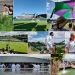 Wimbledon 2019,Wimbledon,Wimbledon Championship,Wimbledon Championship 2019,Wimbledon Championship 2019 Pictures