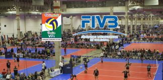 S Vasudevan,Volleyball Federation of India,FIVB,VFI elections,Sports Business News India