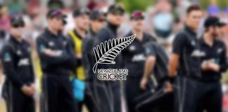 Cricket New Zealand,ECB Cricket,England Cricket Board,England Cricket,Cricket Business
